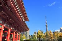 浅草寺・宝蔵門とスカイツリーに紅葉