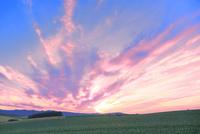 美瑛 丘と夕焼け雲 11076032291| 写真素材・ストックフォト・画像・イラスト素材|アマナイメージズ