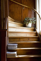 Wooden steps at home