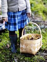 Girl  with basket full of mushroom standing in forest 11077004023| 写真素材・ストックフォト・画像・イラスト素材|アマナイメージズ