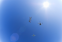 Parachute jumpers in the sky