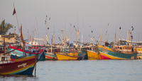 View of moored fishing boats