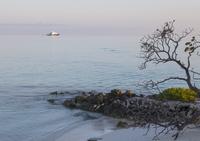 Beach at dusk, remote cruise ship on sea