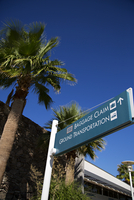 Low angle view of palm trees and airport sign