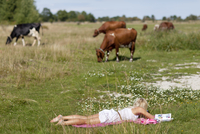 Woman reading on meadow, cows in background