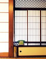Green telephone 11077010319| 写真素材・ストックフォト・画像・イラスト素材|アマナイメージズ