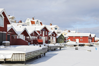 Wooden houses at winter
