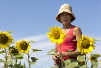 Mature woman on sunflower field