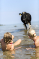 Girls in water looking at cow
