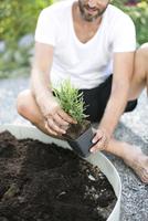 Mid adult man planting lavender plant 11077012097| 写真素材・ストックフォト・画像・イラスト素材|アマナイメージズ
