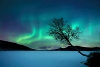 Aurora Borealis over Sandvannet Lake in Troms County, Norway 11079000158| 写真素材・ストックフォト・画像・イラスト素材|アマナイメージズ