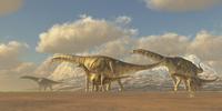 A herd of Argentinosaurus dinosaurs.