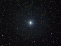 The bright star Altair in the constellation Aquila.