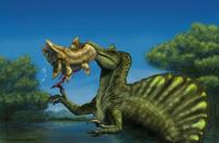 A Spinosaurus dinosaur fishing Mawsonias in a mangrove. 11079016983| 写真素材・ストックフォト・画像・イラスト素材|アマナイメージズ