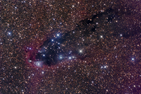 The Dark Tower, Cometary Globule in Scorpius.