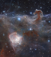 The star-forming region NGC 2024 in the constellation Orion.