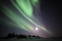 Aurora Borealis, Yellowknife, Northwest Territories, Canada.