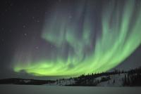 Aurora borealis over Prosperous Lake, Canada.
