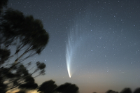 Comet McNaught P1