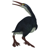 Hesperornis was a a flightless bird that lived during the Cretaceous Period.