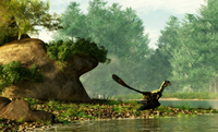 Archaeopteryx on the shore of a river.