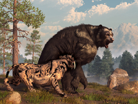A saber-toothed cat tries to drive a short-faced bear out of its territory.
