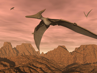 Three pteranodon dinosaurs flying above rocky landscape.