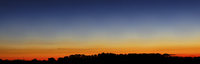 Wide panorama of Comet Panstarrs, Buenos Aires, Argentina.