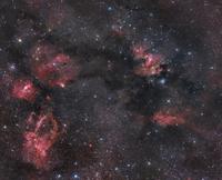 Nebulosity in the Cepheus constellation. 11079024794| 写真素材・ストックフォト・画像・イラスト素材|アマナイメージズ