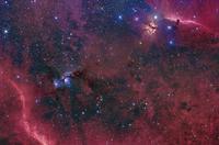 Widefield view in the Orion constellation. 11079024796| 写真素材・ストックフォト・画像・イラスト素材|アマナイメージズ