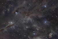 Beautiful dusty nebulae of Taurus 11079024803| 写真素材・ストックフォト・画像・イラスト素材|アマナイメージズ