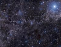 MBM dust complex in Pegasus. 11079024809| 写真素材・ストックフォト・画像・イラスト素材|アマナイメージズ