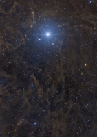 Polaris surrounded by molecular clouds.