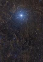 Polaris surrounded by molecular clouds. 11079024811| 写真素材・ストックフォト・画像・イラスト素材|アマナイメージズ