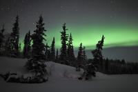 Aurora Borealis over Vee Lake, Northwest Territories, Canada. 11079024947  写真素材・ストックフォト・画像・イラスト素材 アマナイメージズ