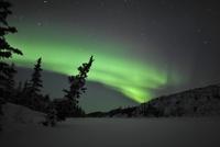 Aurora Borealis over Vee Lake, Northwest Territories, Canada. 11079024948| 写真素材・ストックフォト・画像・イラスト素材|アマナイメージズ