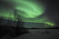 Aurora Borealis over Vee Lake, Northwest Territories, Canada. 11079024951| 写真素材・ストックフォト・画像・イラスト素材|アマナイメージズ