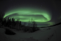 Aurora Borealis over Vee Lake, Northwest Territories, Canada. 11079024952| 写真素材・ストックフォト・画像・イラスト素材|アマナイメージズ