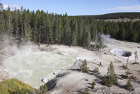 Sulphur Cauldron hot spring, Yellowstone National Park, Wyoming.