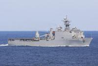 The amphibious dock landing ship USS Carter Hall.