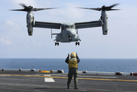An aviation boatswain's mate directs the landing of an MV-22 Osprey.