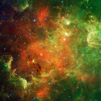 Clusters of young stars in the North American Nebula.