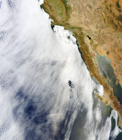 A glory is seen above a layer of stratocumulus clouds over the Pacific Ocean.