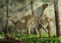 A pair of Iguanodon bernissartensis grazing. 11079027438| 写真素材・ストックフォト・画像・イラスト素材|アマナイメージズ