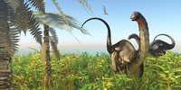 Two Apatosaurus dinosaurs in a lush Cretaceous jungle. 11079027494| 写真素材・ストックフォト・画像・イラスト素材|アマナイメージズ