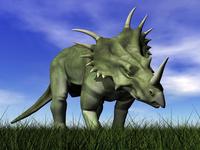 Styracosaurus dinosaur walking in the grass.