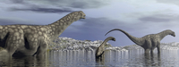 Argentinosaurus dinosaur family walking in the water.