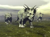 Three Styracosaurus dinosaurs.