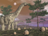 Argentinosaurus dinosaur eating leaves from the tree tops.