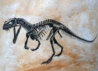 Ceratosaurus dinosaur skeleton.